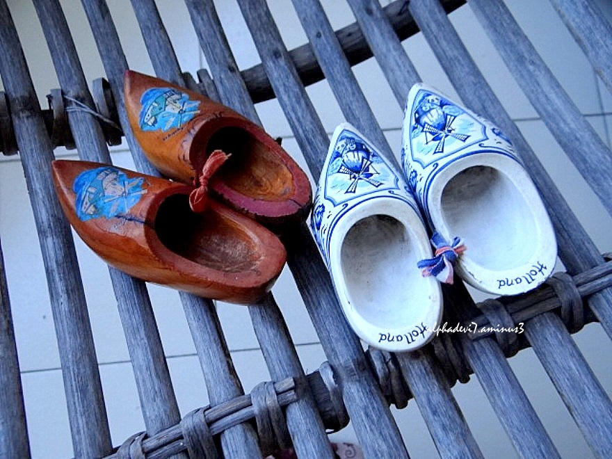 The tiny wooden shoes:)))