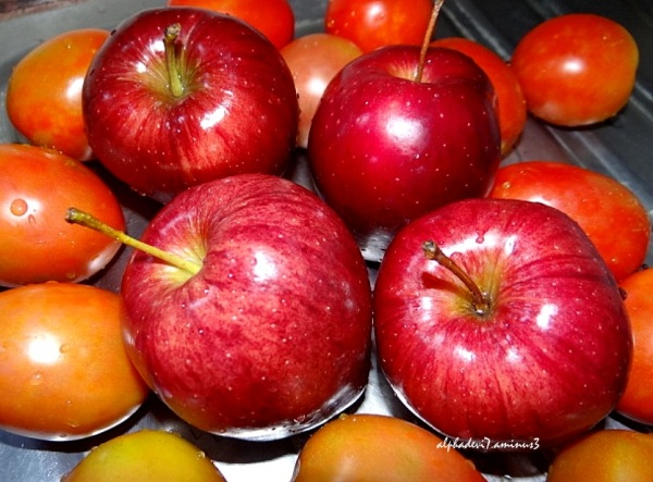 Apples  &  Tomatoes :)))