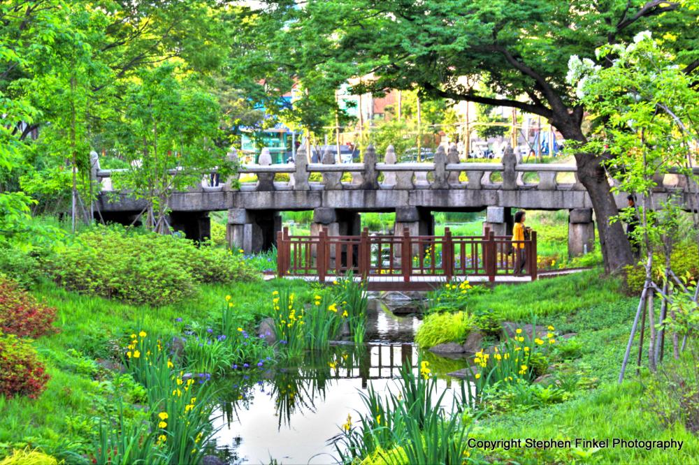 Korean Bridge