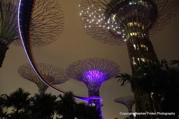 Electric Trees 1