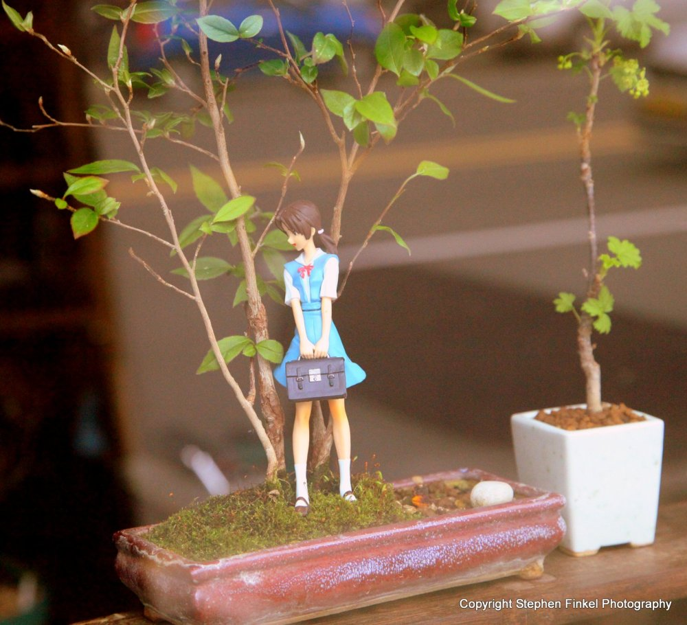 Little People in the Garden