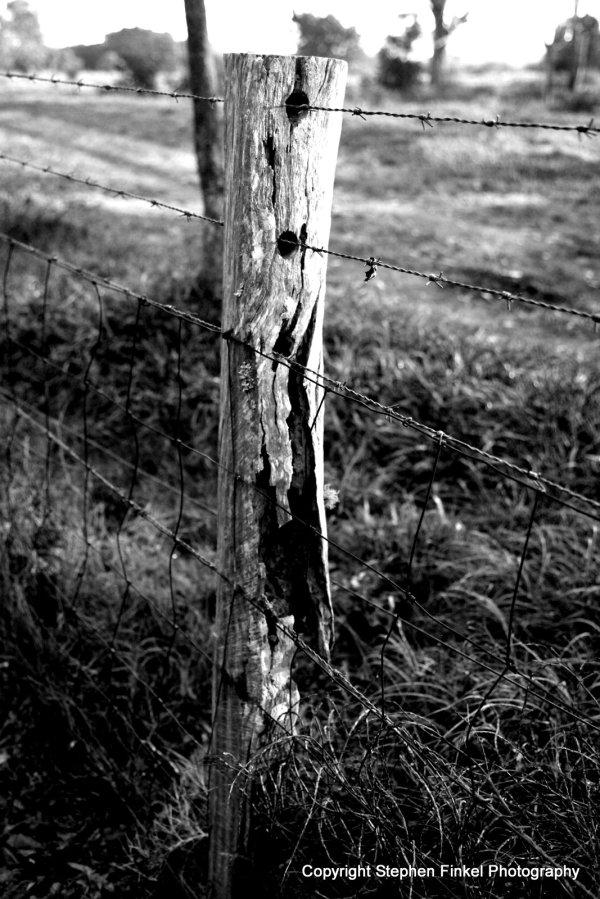 Aussie Bush Fence
