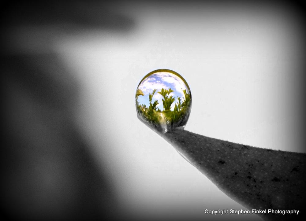World in a Waterdrop