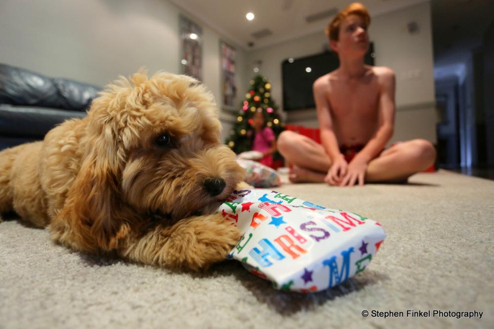Tess gets a Present