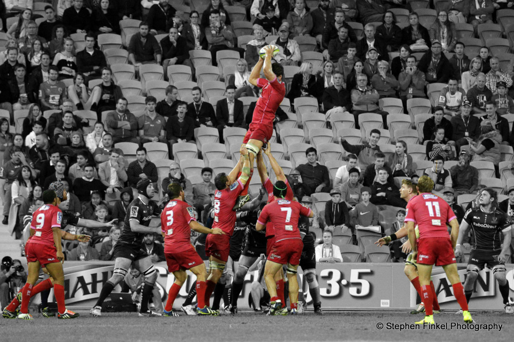 The Reds Rugby
