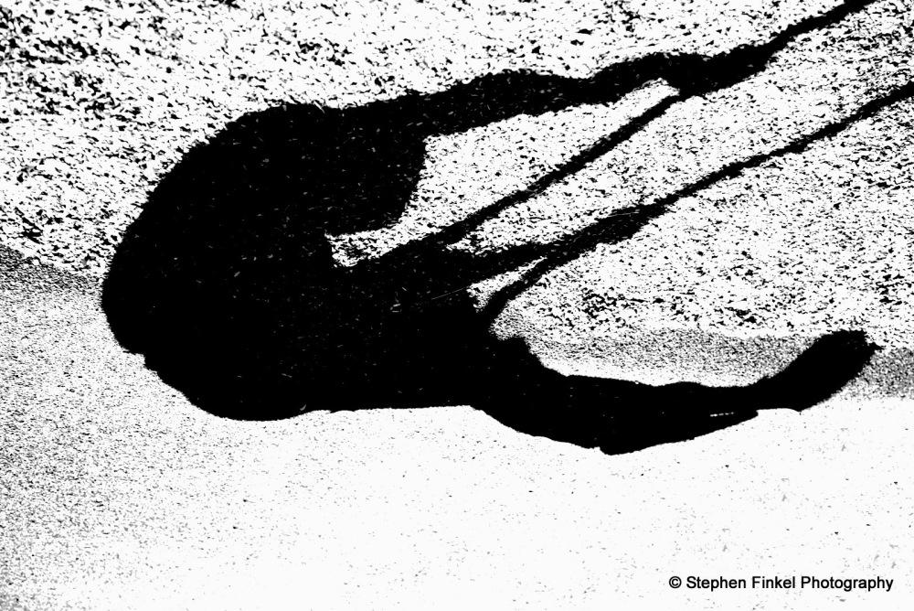 Swinging Shadows