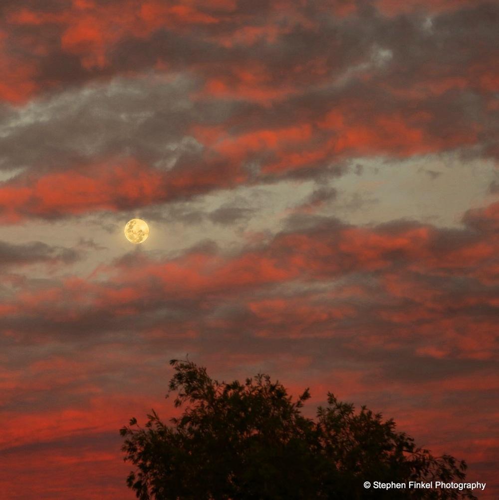 Moon Setting Sun Rising