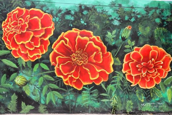 Marigold Art