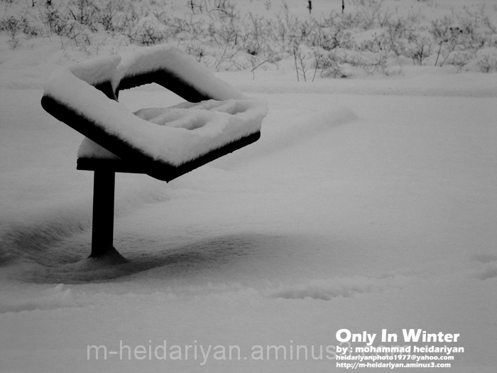 Only in winter
