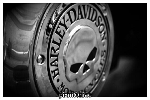 HARLEY DAVIDSON moto motorcycle