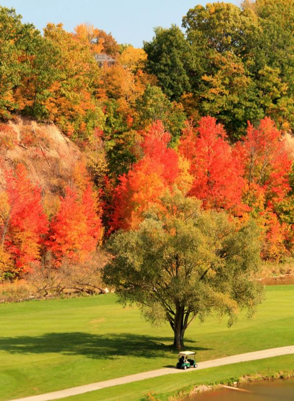 Golf fall autumn colours leisure