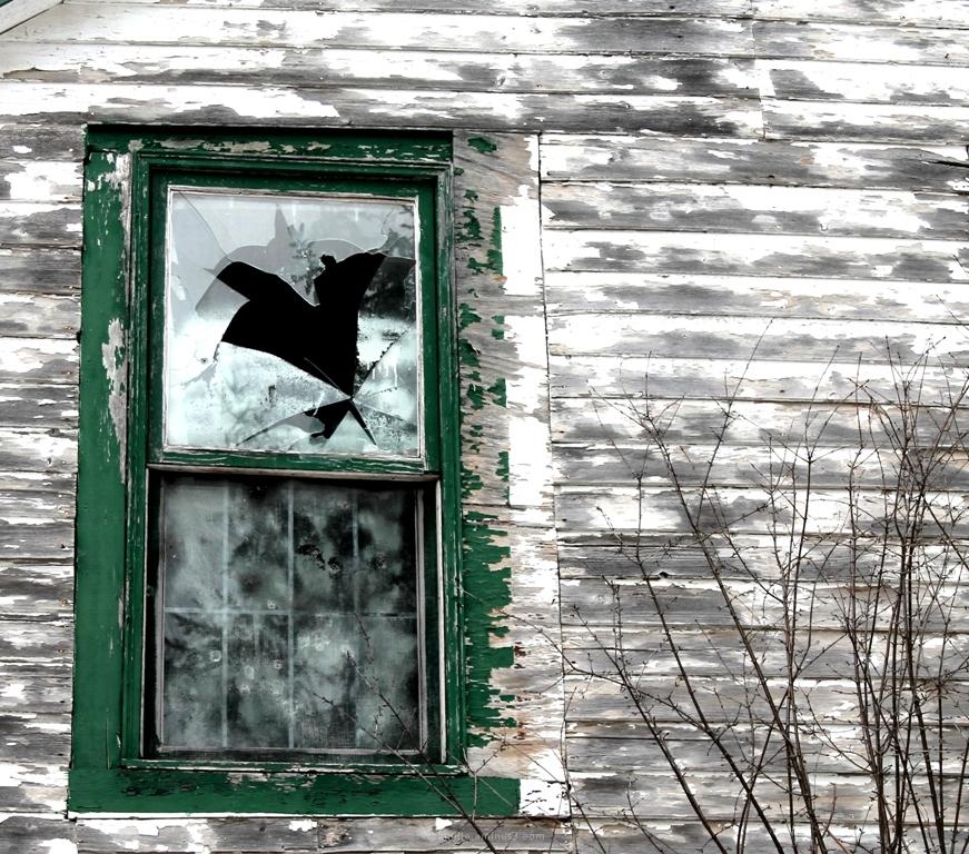 broken old window, house, abandoned