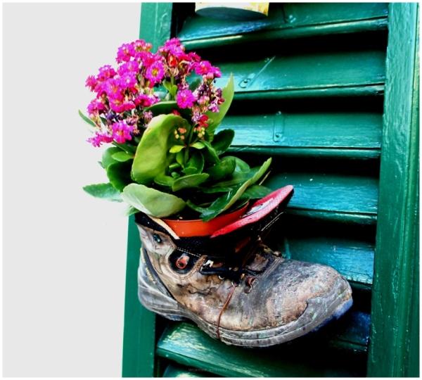 Boots, Flower, Pot