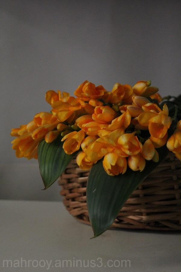به رنگ بهار 2