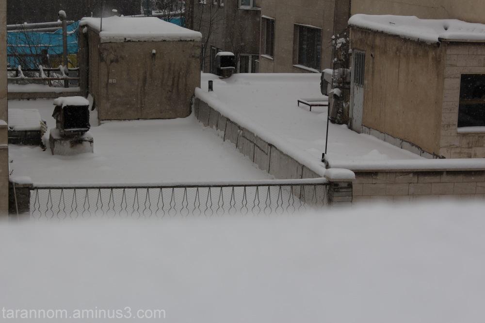 Snow-15