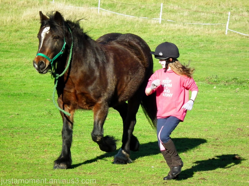 running with horses