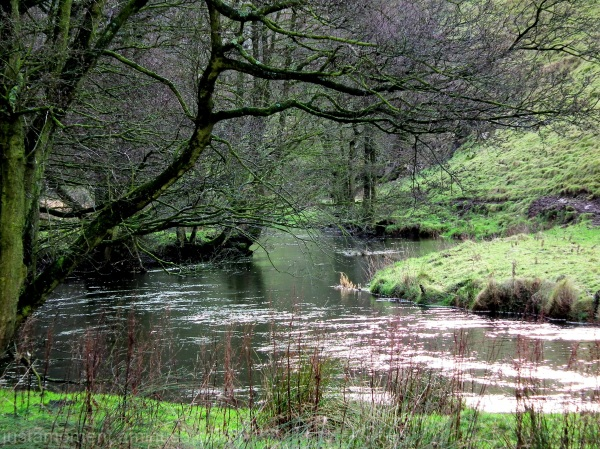 river dove wolscote dale