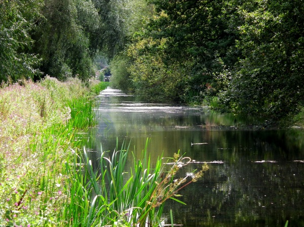 Grantham canal