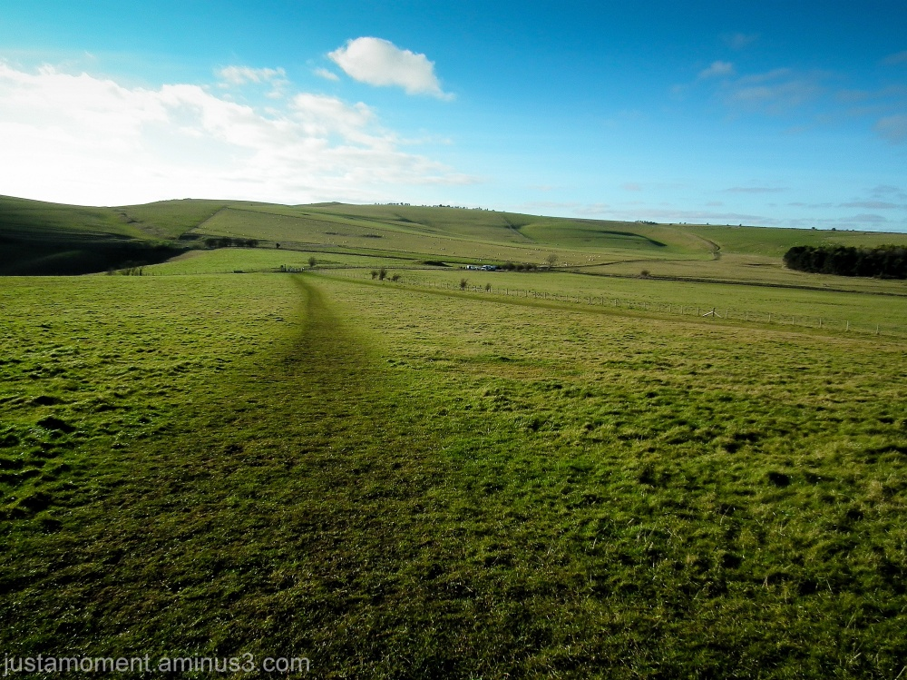 Pewsey Downs, Wiltshire.