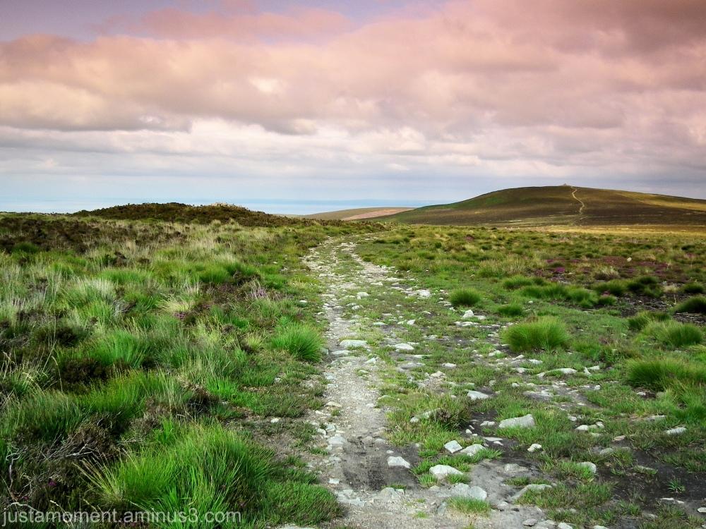 Dunkery hill exmoor