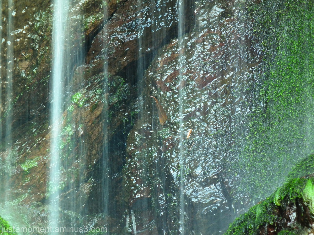 Waterfall Woody Bay.