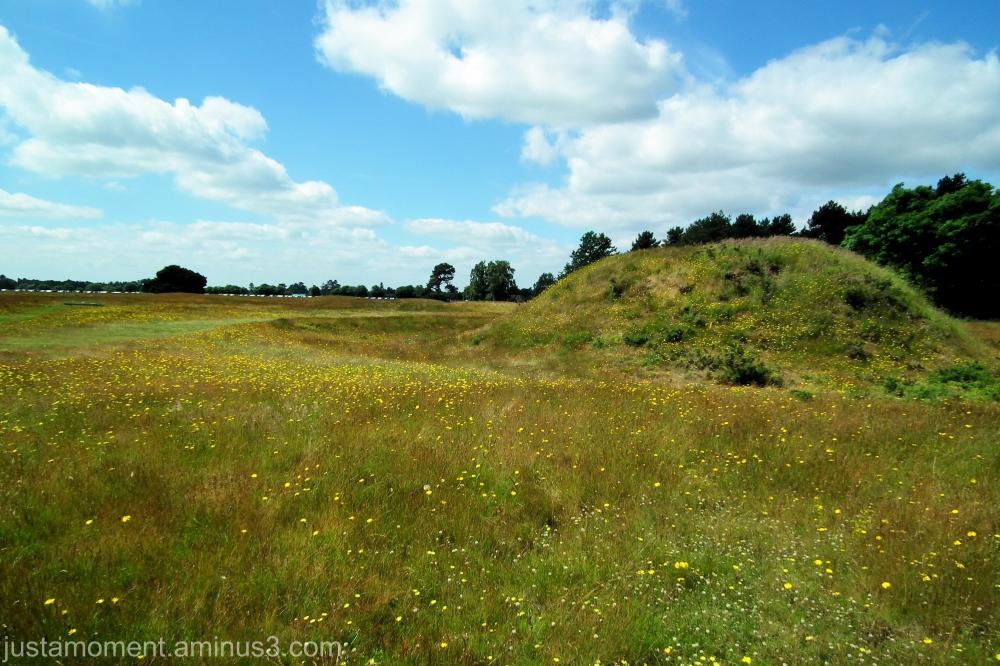 Sutton Hoo.