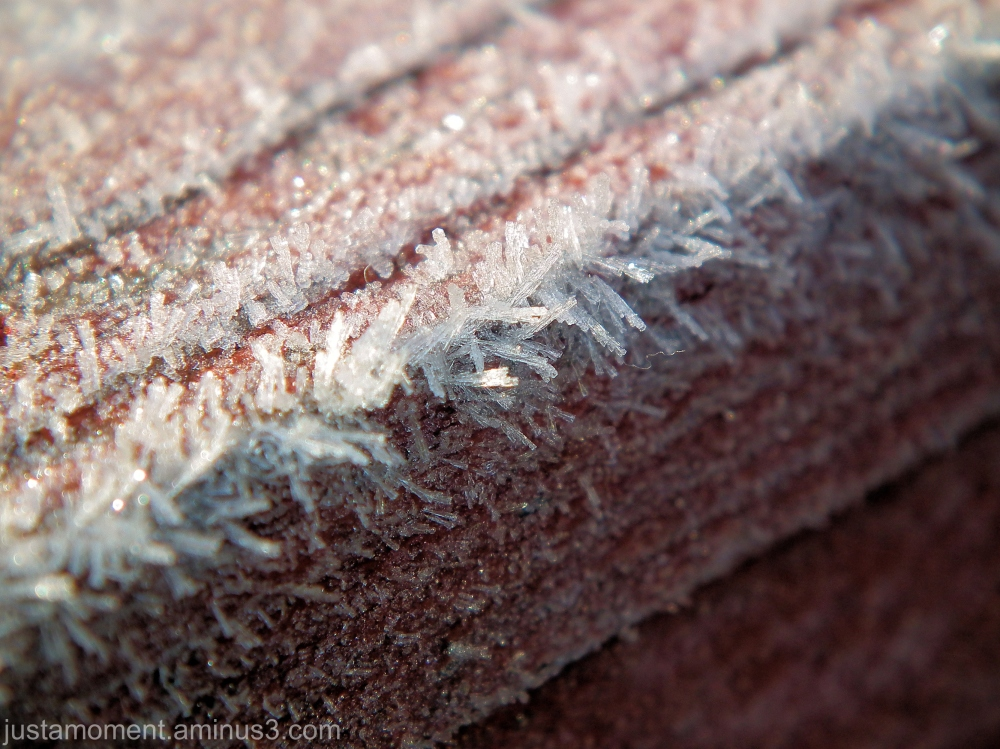 The macro world of ice.