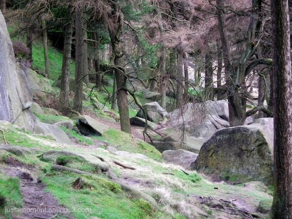 Big boulders.