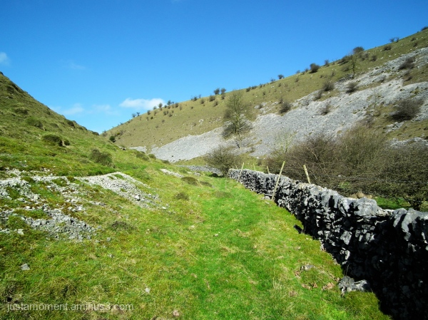 Scree slope on Biggin Dale.