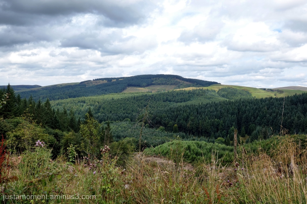 Macclesfield Forest.