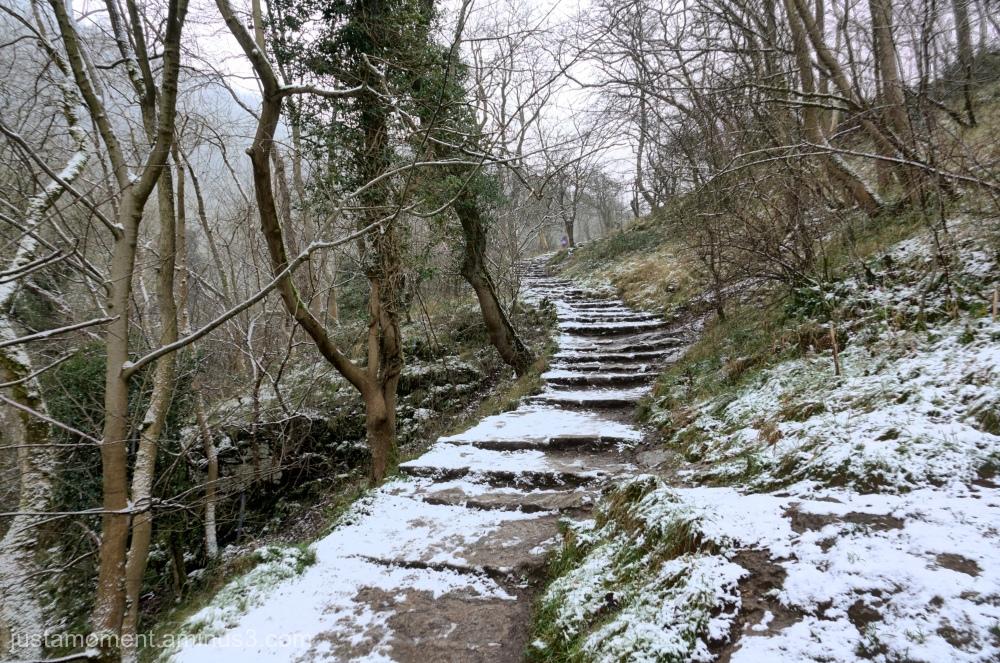 Dovedale Steps.