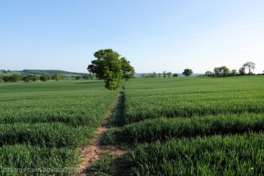 Nottinghamshire.