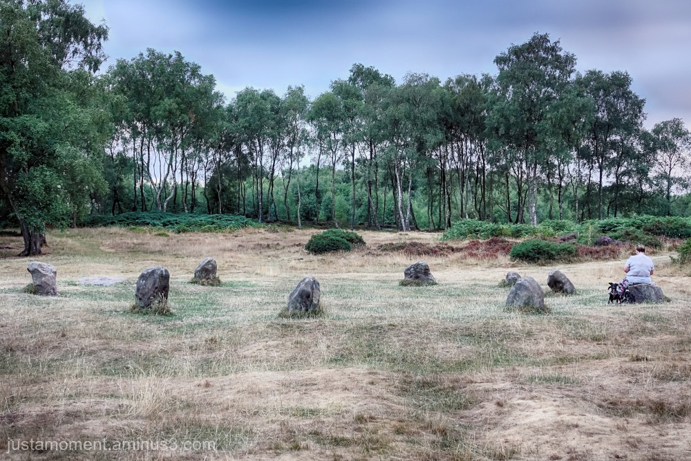 Nine Ladies Stone Circle
