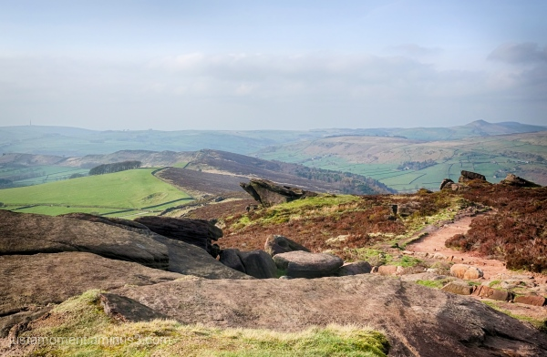 Walking The Roaches.