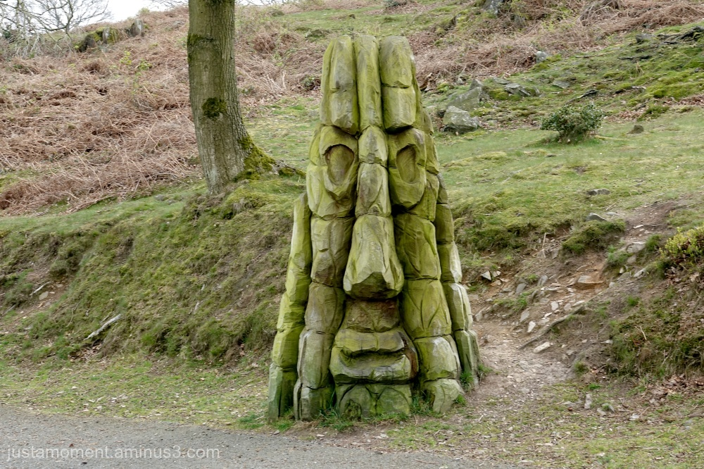Tree carving.