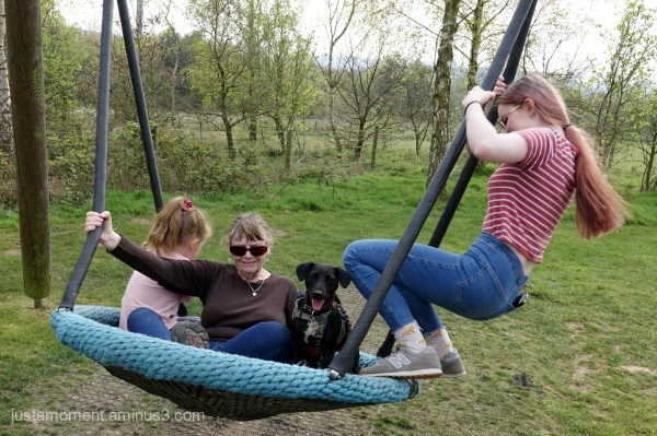 All on a swing.