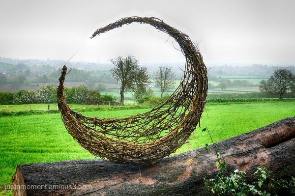 Willow Sculpture - Open Cycle.