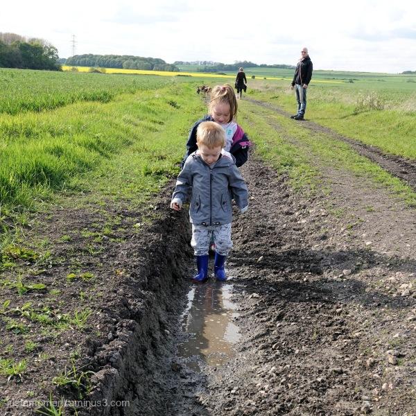 Muddy puddles.