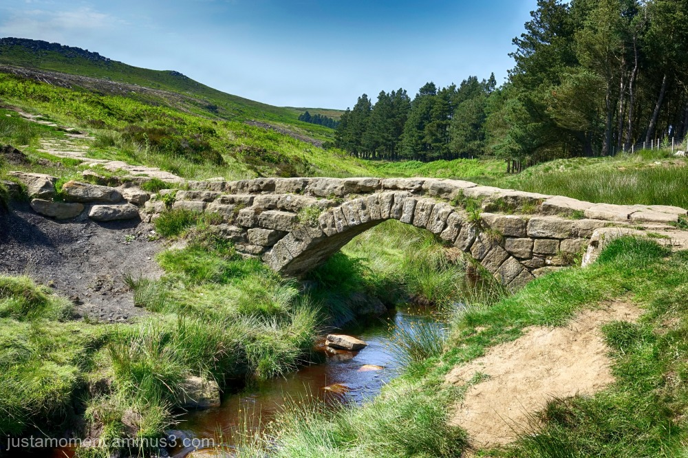 Burbage Brook.