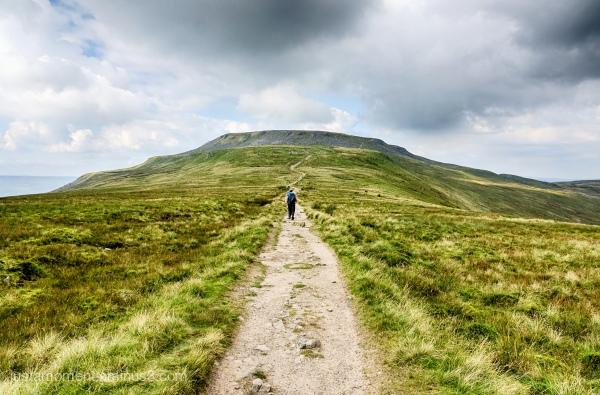 Long Walk.