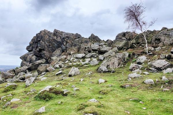 Beacon Hill Rocks.