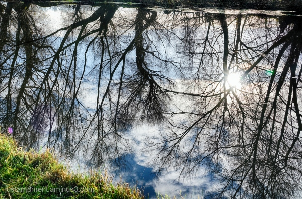 Reflections on the River Soar.