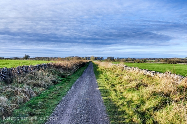 Long Lane.