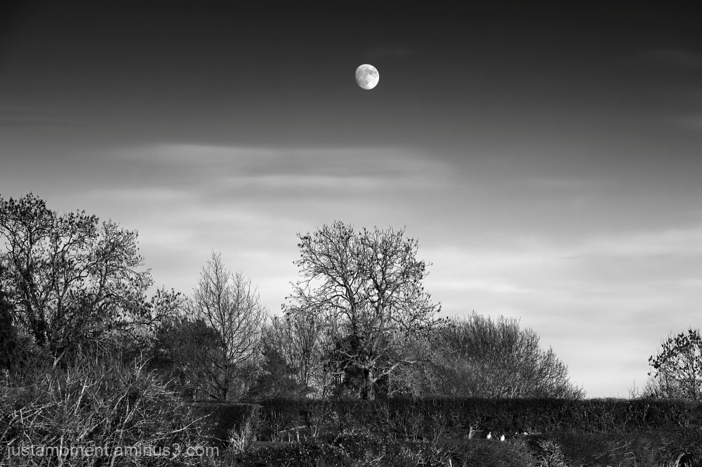 Today's Moon.