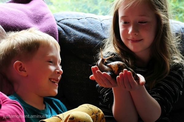 Lola, Kyle and Steve the snail.