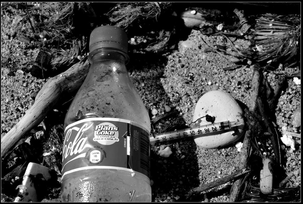 Poisons échoués