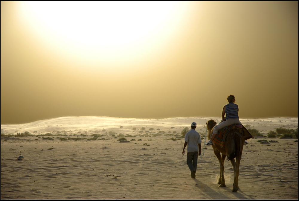 Porte du désert