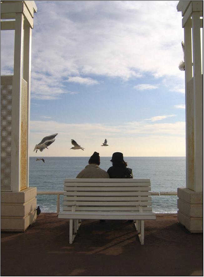 Les oiseaux pour seuls témoins