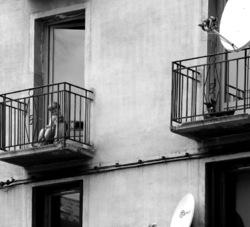 Parabole de l'isolement