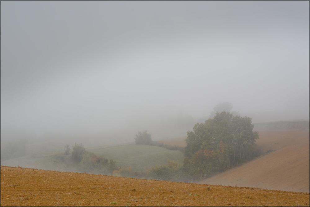 Horizon perdu